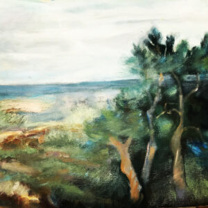 The bay view 30x50cm 4300:-