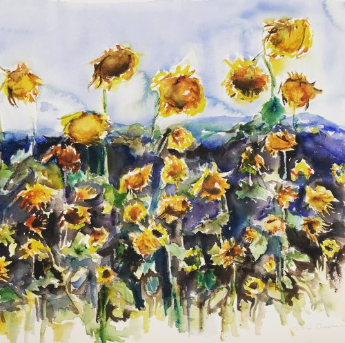 Sunflowers, akvarell